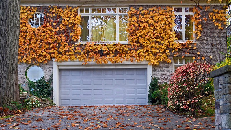Fall Real Estate Market News